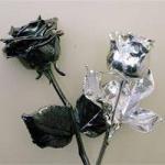rozen verzilverd