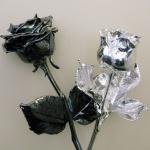 rozen verzilveren